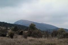 Pred nami se pokaže današnji vrh - Žbevnica (1014m)