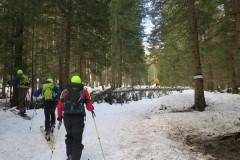 Najprej po gozdu oz. tekaški progi