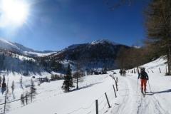 Prihod na planino; krasna kulisa