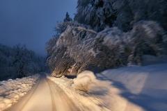 Zimsko jutro v Davči